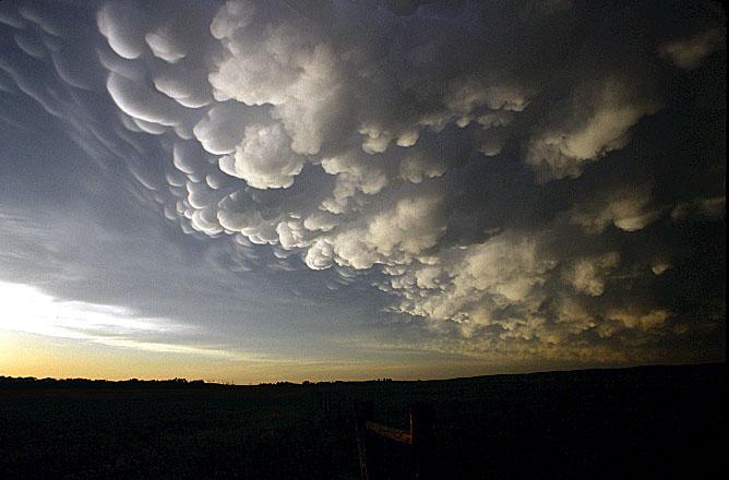 Nebo i oblaci 70503%20ElsmereMammaHzt