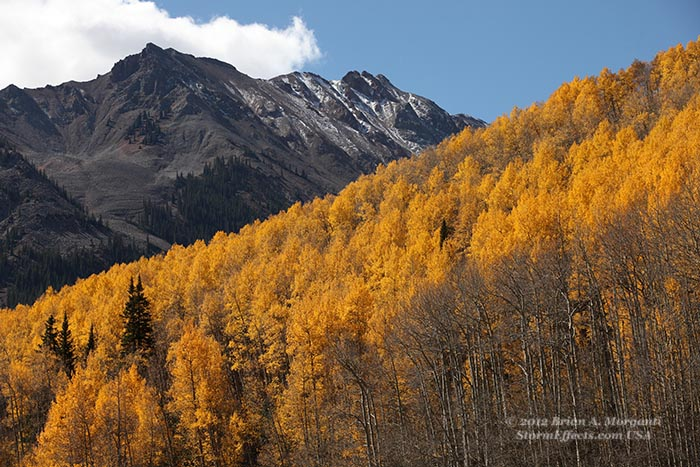 co_fall_foliage2_Maroon_Bells